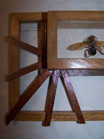 framed hornet (wooden detail)