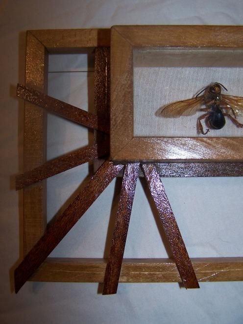 framed hornet (wooden detail)